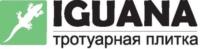 Игуана — тротуарная плитка в Харькове